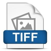 8mm film do TIFF